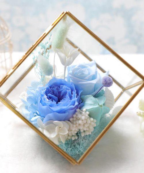 人魚傳說永生花 (Tiffany Blue)